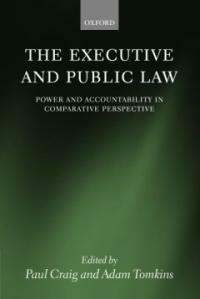 The executive and public law : power and accountability in comparative perspective