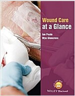 Wound Care at a Glance (Paperback)