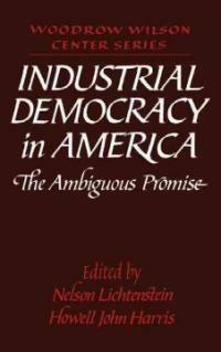 Industrial democracy in America : the ambiguous promise