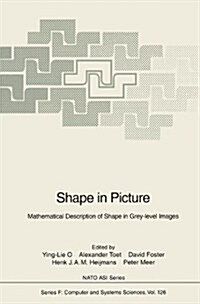 Shape in Picture: Mathematical Description of Shape in Grey-Level Images (Hardcover, 1994)