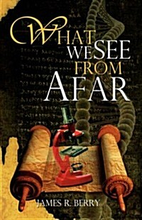 What We See from Afar (Paperback)
