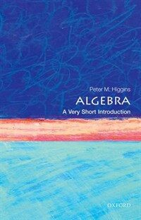 Algebra: A Very Short Introduction (Paperback)