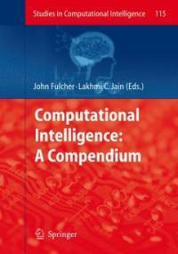 Computational intelligence : a compendium