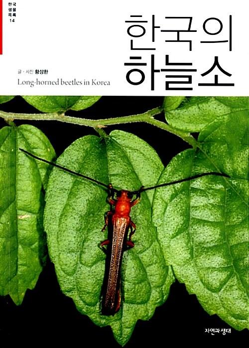한국의 하늘소