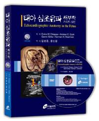 태아심초음파 해부학 가이드라인