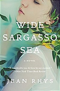 Wide Sargasso Sea (Paperback)