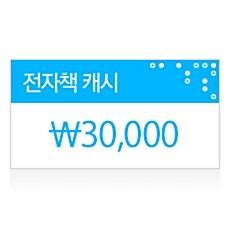 알라딘 전자책캐시(30,000원)