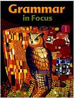 Grammar in Focus 1 : Studentbook (Paperback + Audio CD 1장)
