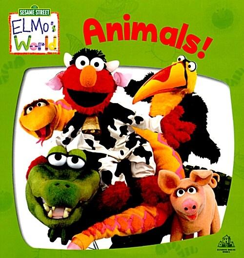 Animals! 동물친구들