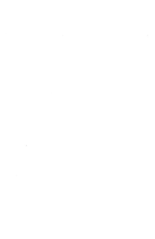 허수아비춤 : 조정래 장편소설 제2판