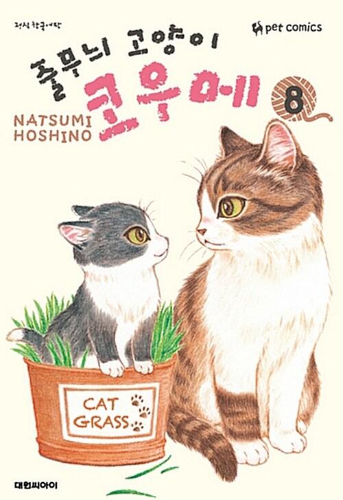 줄무늬 고양이 코우메 8
