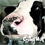 크라잉 넛 5집 - OK 목장의 젖소
