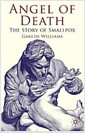 Angel of Death : The Story of Smallpox (Hardcover)