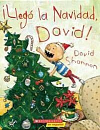 Llego La Navidad, David!: (Spanish Language Edition of Its Christmas, David!) (Paperback)