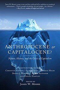 Anthropocene or Capitalocene?: Nature, History, and the Crisis of Capitalism (Paperback)