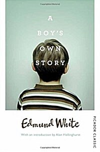 A Boys Own Story (Paperback)