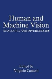 Human and machine vision : analogies and divergencies