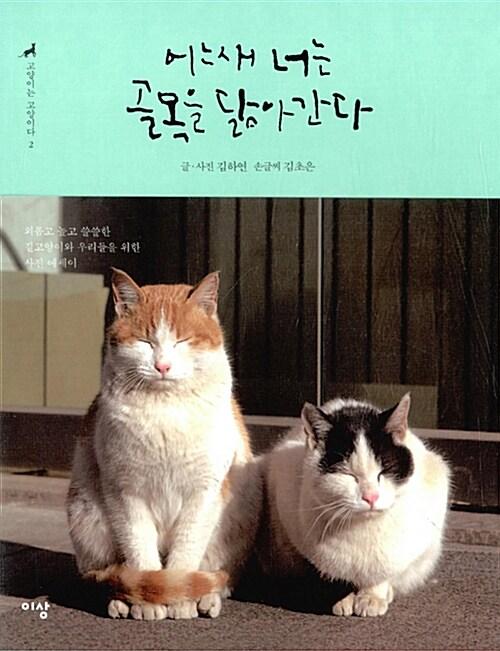고양이는 고양이다 2