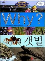 [중고] Why? 갯벌