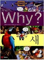 Why? 새