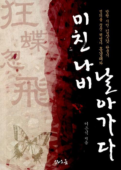 미친 나비 날아가다 : 정의를 꿈꾼 혁명가 홍경래와 방랑 시인 김삿갓 탄생기