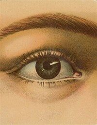 John Derian Picture Book (Hardcover)