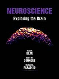 Neuroscience : exploring the brain