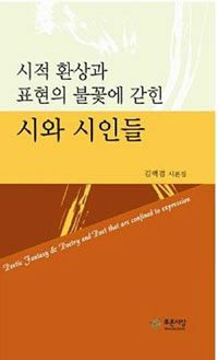 (시적 환상과 표현의 불꽃에 갇힌) 시와 시인들 : 김백겸 시론집