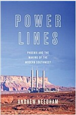 Power Lines: Phoenix and the Making of the Modern Southwest (Paperback)