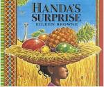Handa's Surprise (Board Book)