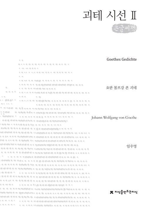 괴테 시선 2 (큰글씨책)