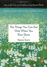 The Things You Can See Only When You Slow Down: How to Be Calm in a Busy World (Hardcover)