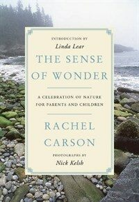 The Sense of Wonder: A Celebration of Nature for Parents and Children (Paperback)