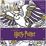 Harry Potter: Winter at Hogwarts: A Magical Coloring Set (Other)
