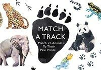 Match a Track : Match 25 Animals to Their Paw Prints (Cards)