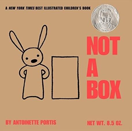 Not a Box Board Book (Board Books)