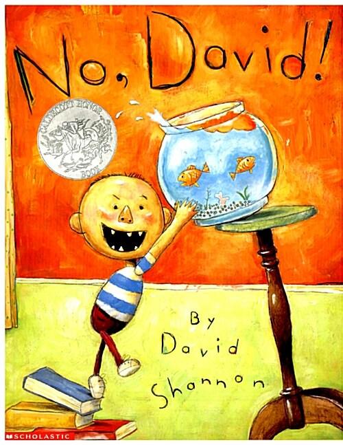 No, David! (Paperback)