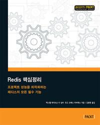Redis 핵심정리 : 프로젝트 성능을 최적화하는 레디스의 모든 필수 기능