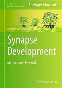Synapse development : methods and protocols