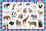 동물 친구들 (8절 퍼즐)