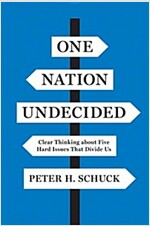 One Nation Undecided: Clear Thinking about Five Hard Issues That Divide Us (Hardcover)