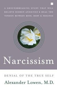 Narcissism : denial of the true self 1st Touchstone ed