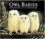 Owl Babies (Paperback, New ed)
