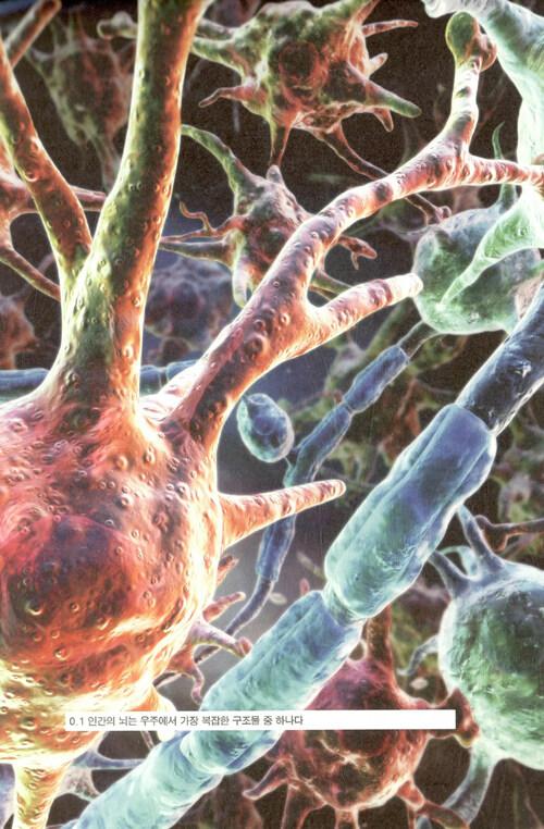 나는 뇌입니다 : 내가 누구인지 말해주는 뇌과학 이야기