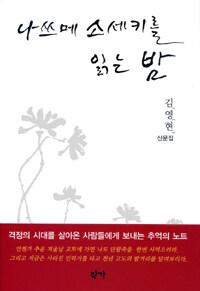 나쓰메 소세키를 읽는 밤 : 김영현 산문집