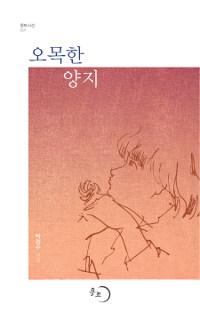 오목한 양지 : 박정수 시집